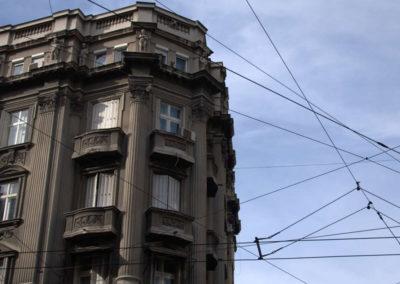 Beograd Vase Carapica